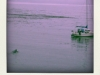 jamie\'s boat