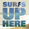 "VICE & RED BULL PRESENT A NEW MADE-IN CANADA SURF SERIES,  ""SURFS UP HERE"""